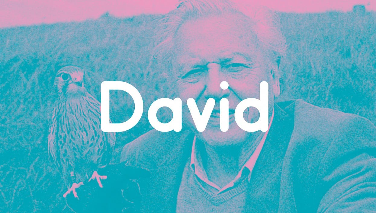 David Attenborough inspiration for the Weapons of Reason typeface