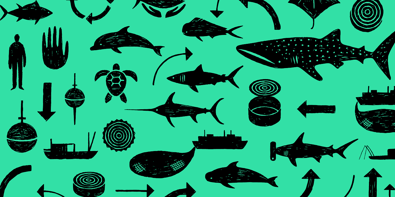 Greenpeace Just Tuna Campaign design by Human After All design agency