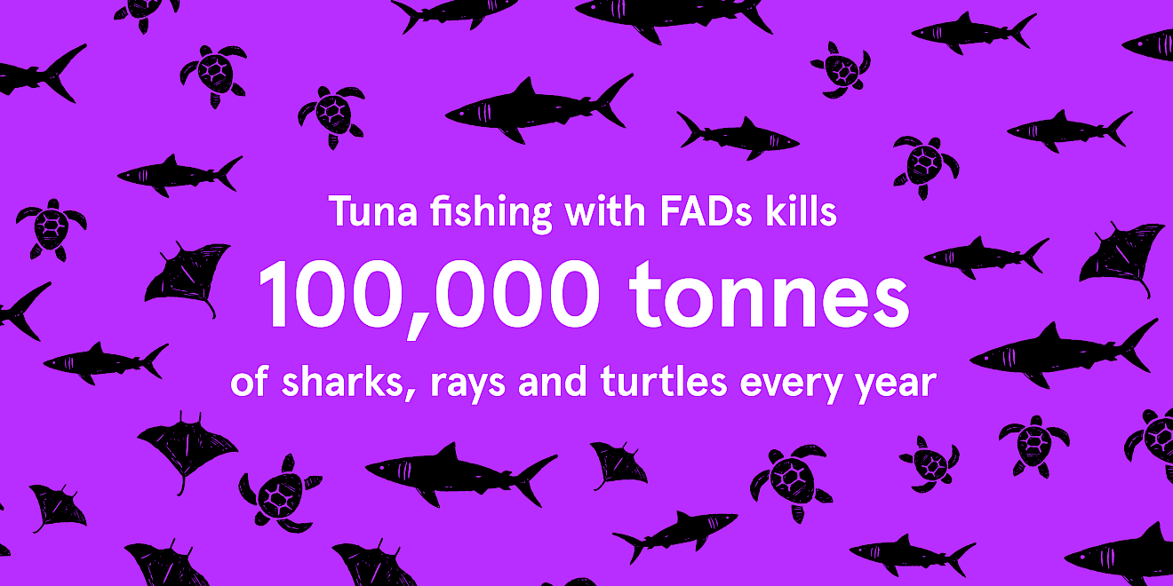 Greenpeace Just Tuna campaign data visualisation - image 1