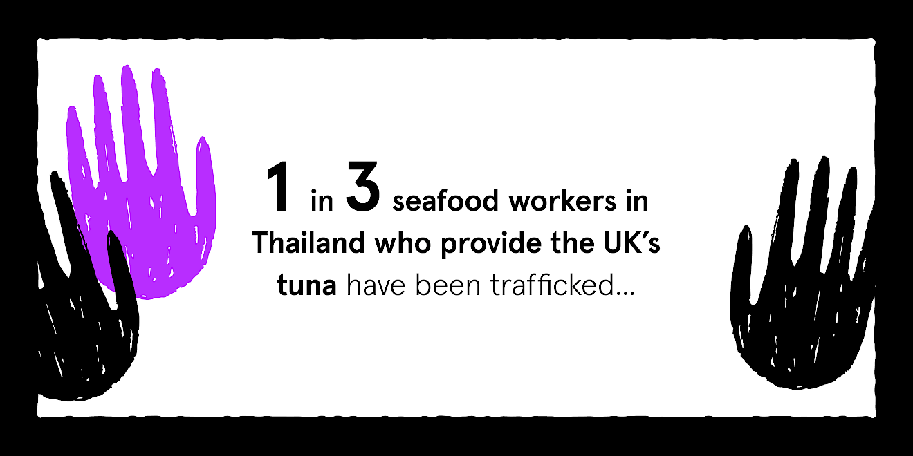Greenpeace Just Tuna campaign data visualisation - image 3